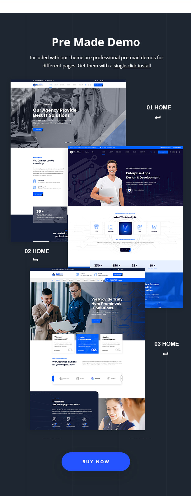 Globex - IT Solutions & Services WordPress Theme - 8